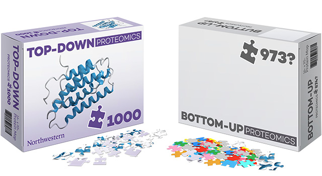 Proteomics Puzzle Illustrations
